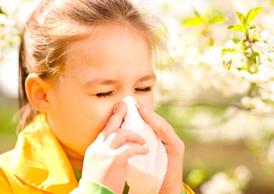 аллергология детская