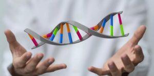Генетический тест Атлас – что о вас расскажут ваши гены?